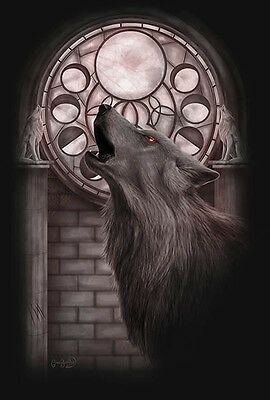 NEW CLARE BARTRAM CYCLE OF THE WOLF  3d PRINT PICTURE WITH FREE POSTAGE