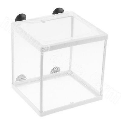 Aquarium White Net Breeding Trap, Fish Tank Fry, Live Young, Tropical