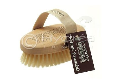 Hydrea Professional Body Brush With Medium Strength Natural Bristles Beechwood