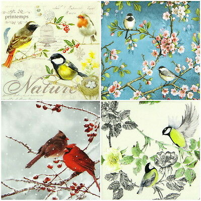 4x Paper Napkins -Colorful Birds- for Party, Decoupage Decopatch Craft MIX
