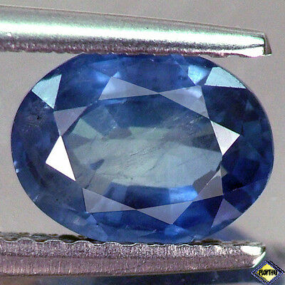 1.41Ct Stunning Top Oval Heated Only Thailand Blue Sapphire