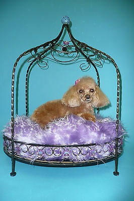 Decorative Dog Bed - Lavender