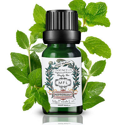 100% Pure Nature Aromatherapy 10ml Essential Oils Choose Fragrance Aroma US LsCG
