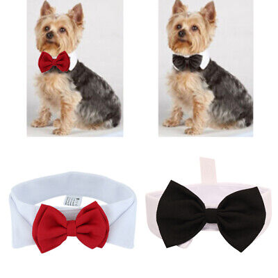 Fashion Adjustable Bow Tie Collar Necktie Bowknot Clothes For Pet Dog Cat New