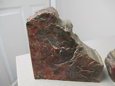 """ExquisitePetrified Wood Pair of Book Ends 5 3/4"""" Long by 5 1/2"""" tall by 2"""" Thick"""