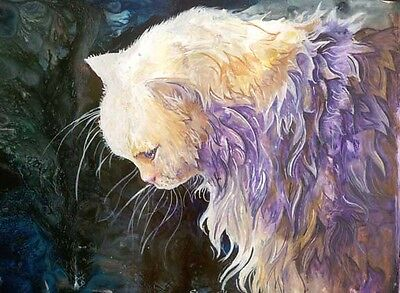 CONTEMPLATION 8x10  CAT Art Print by Sherry Shipley