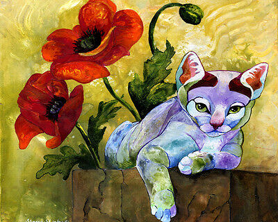 SHEBA 8x10 CAT Art Print by Sherry Shipley
