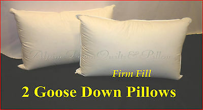 2  Standard Pillows Firm - 70% Goose Down 30% Goose Feathers  100% Cotton Casing