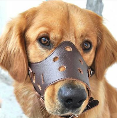 Brown Leather Dog Muzzles Adjustable quality leather and fastenings