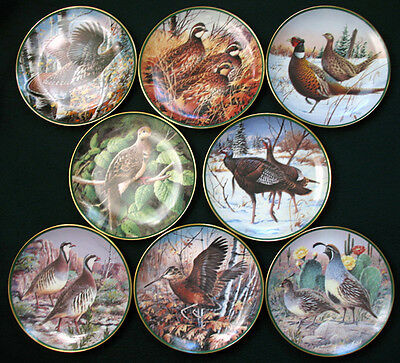 8 Plates NORTH AMERICAN GAME BIRDS ~ JIM KILLEN Dove,Quail,Pheasant,Turkey COA