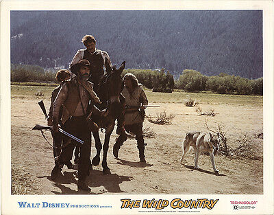 The Wild Country 1970 Original Movie Poster Adventure Family Western