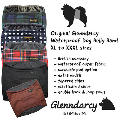 Glenndarcy Male Dog Belly Band Nappy I Urine Incontinence I XL to XXXL
