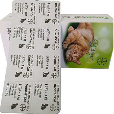 Bayer Drontal Cats Pussy Dewormers Roundworm Tapeworm Protect Health Treatment
