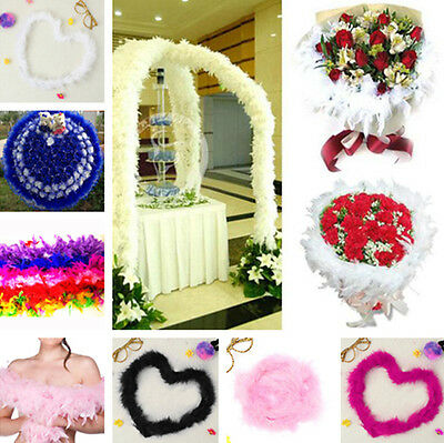 2M Fluffy Feather Boa Party Costume Dancing Home Wedding Perform Flower Decor #