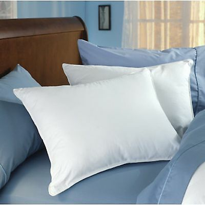 Classic Down Dreams Pillow found in Hilton Hotels