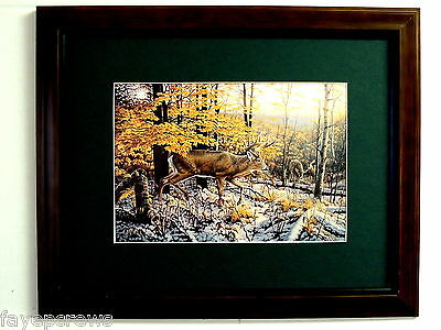 Deer Picture Big Buck Doe Deer Hunting Snow Scene  Matted Framed 11X14