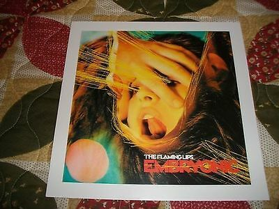 The Flaming Lips Embryonic Lithograph Poster cd/lp vinyl record art! NEW! rare
