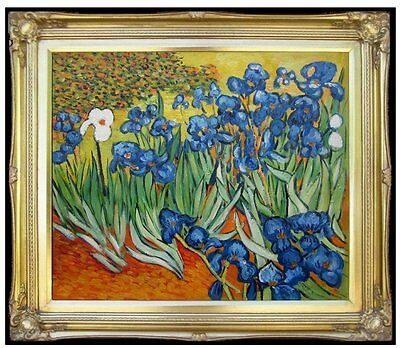 Framed, Van Gogh Field with Irises Repro, Hand Painted Oil Painting 20x24in