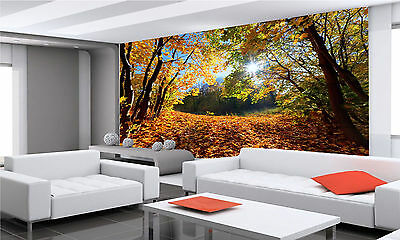 Landscape in Forest Wall Mural Photo Wallpaper GIANT DECOR Paper Poster
