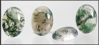 Moss Agate      18Mm X 13Mm             Oval Cabochons X 2