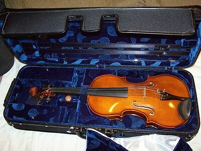BLACK AMERICAN CASE - VIOLA FULL SIZE Oblong Brand New!!Viola Case LIST $695.00
