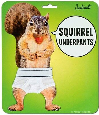 Squirrel Underpants Mini Underwear Tighty Whitey Briefs by Accoutrements