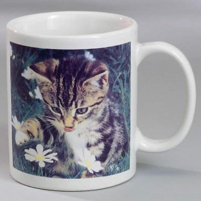 Meowing Sounds Cat Coffee Tea Mug 8Oz. New