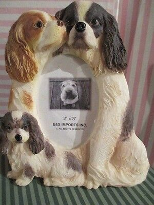 Cavalier King Charles Spaniel Family ~  Picture Frame #13