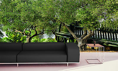 Old Olive Trees  Wall Mural Photo Wallpaper GIANT WALL DECOR PAPER Free Glue