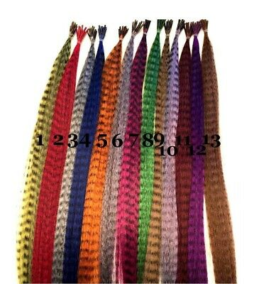 """10 x 16"""" Grizzly Synthetic Feather Hair Extensions, Micro Rings & Pulling Needle"""