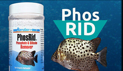 KORDON*PhosRid 328,8g*Eliminates phosphate and silicate from the water