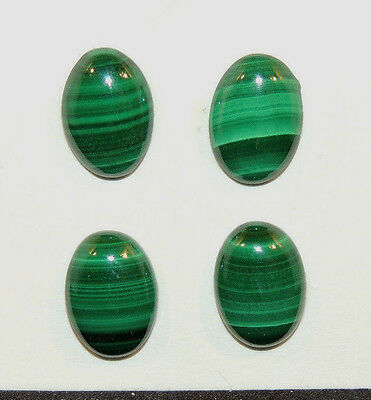 Malachite 10x14mm with 4.5mm dome Cabochons Set of 4 (9971)