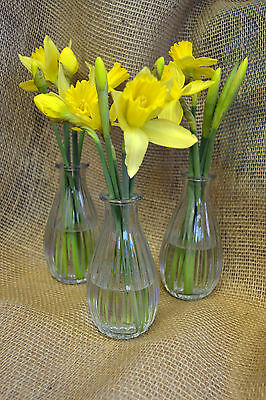 Clear Glass Bud Vases Set of 3 Wedding Vases Table Centre Home Decor