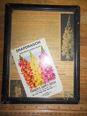 1941 NC SEED PACKAGE Wall Decor AD Farmer Supply Snapdragon Framed Original
