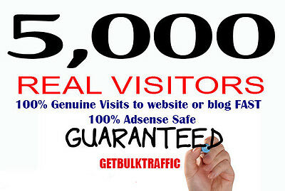 Send 5000 REAL Visitors To Your Website Targeted Vis