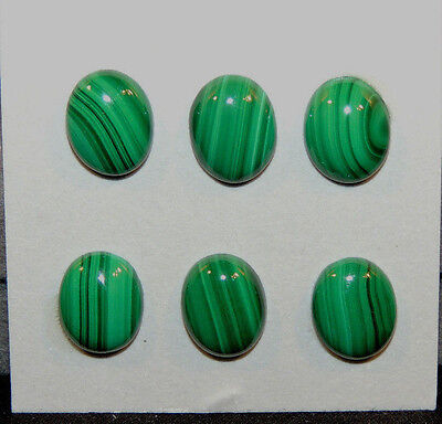 Malachite 8x10mm Cabochons with 3.5mm dome Set of 6 (9999)