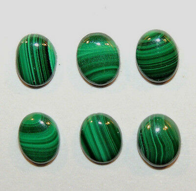 Malachite 8x10mm Cabochons with 3.5mm dome Set of 6 (10000)