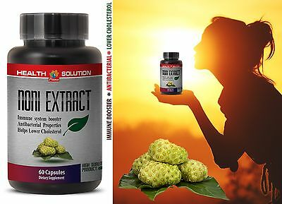 Cholesterol Reduce - NONI EXTRACT 500mg - Anti Bacterial Pills 1 Bottle 60 Caps