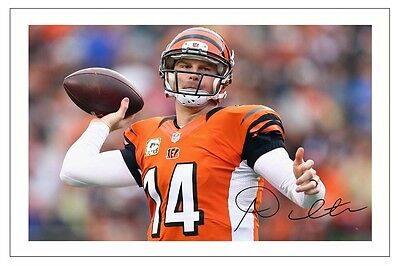 Andrew Dalton Cinncinati Bengals Signed Photo Autograph Print Nfl Football