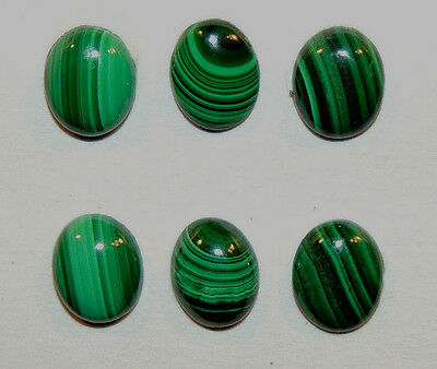 Malachite 8x10mm Cabochons with 3.5mm dome Set of 6 (10002)