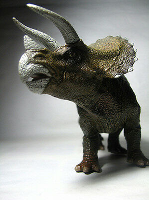New Papo Dinosaur Toy / figure Triceratops
