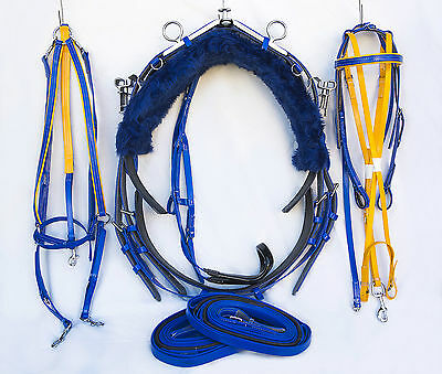 Quick Hitch Style Trotting Harness - Blue  - with Blue and Yellow Accessories