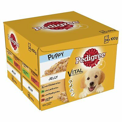 Wet Dog Food Pedigree Puppy Food Selection Jelly Chicken Beef 48 pouches x 100g