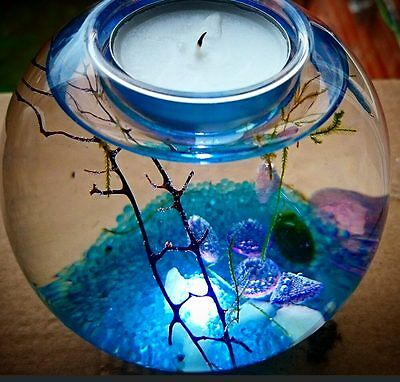 Self sustaining Eco system CANDLE holder! Tealight! valentines gift! love nature