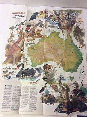 National Geographic Australia Land Of Fossils Wall Map Poster February 1979