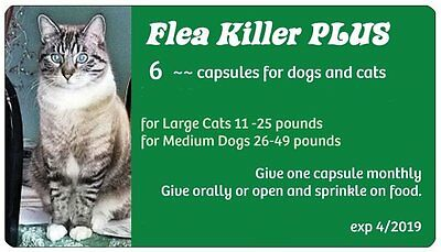 Flea Control with Flea Killer Plus for Cats 11-25 lbs. (6 Green Monthly Caps)