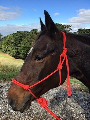 Red Rope Halter, Rope Headstall 7ft lead Halter and lead set  Pony Cob Full