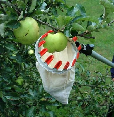 Darlac Swop Top Fruit Picking Harvesting Set Telescopic Pole & Basket