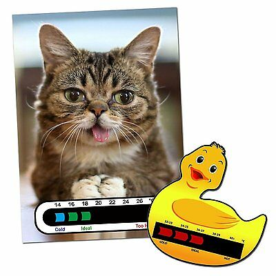 Baby & Child Thermometer Pack - Duck Baby Bath and Kitten Baby Room Thermometers