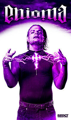 """Official TNA Impact Wrestling Jeff Hardy 3"""" x 5"""" Fabric Banner"""
